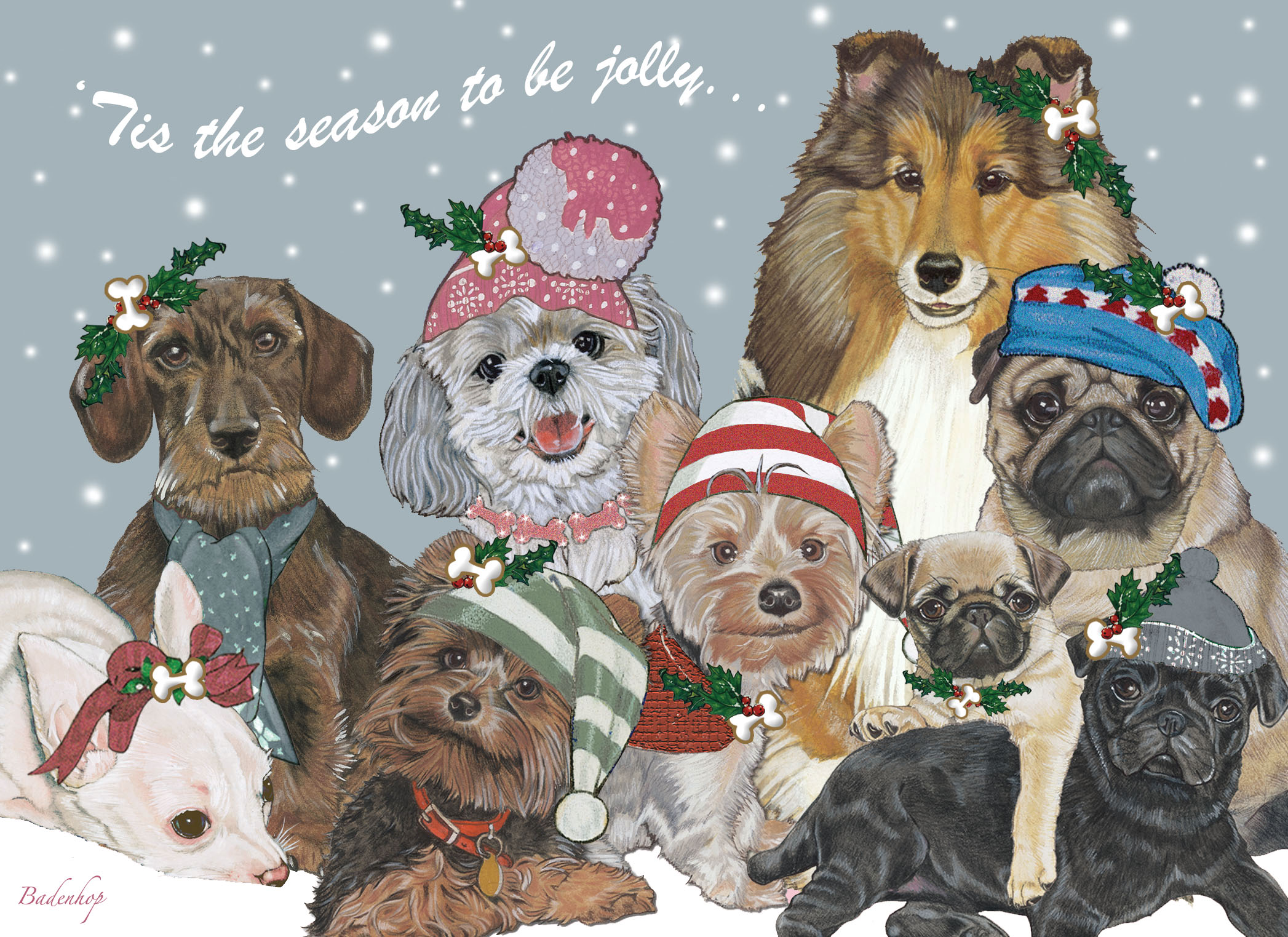 Pipsqueak Productions- Pet Greetings for Pet Lovers Review ...