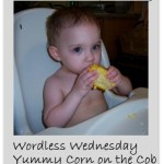 Mostly Wordless Wednesday