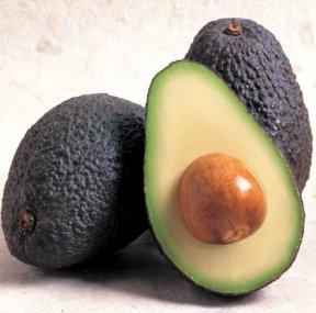 avocadophoto