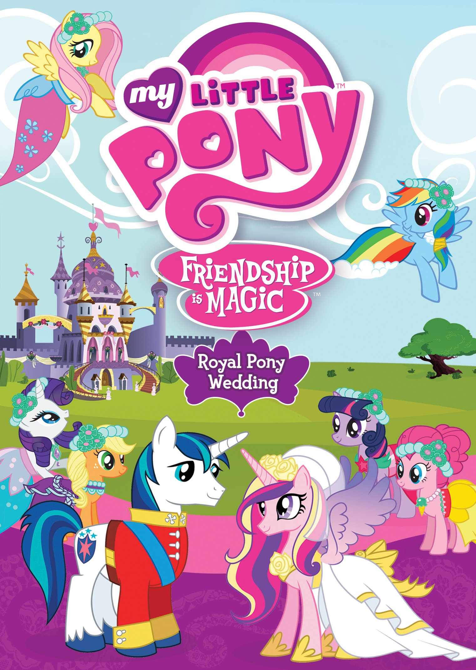 dvd review my little pony friendship is magic royal pony