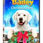 bailey3