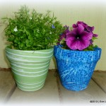 Kimco Flower Pot Sox {Review & Giveaway}