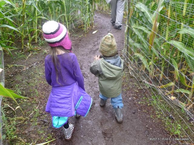 My Children venturing through their 1st Corn Maze!