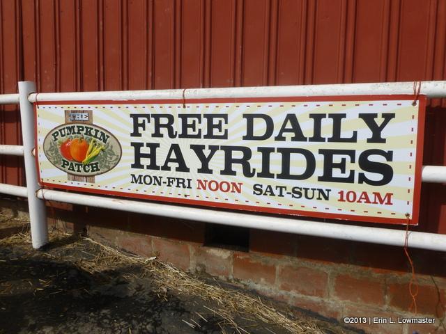 Free Daily Hayrides!