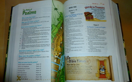 Adventure Bible, NKJV {Book Review} – Connected2Christ
