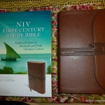 NIV First-Century Study Bible {Review}