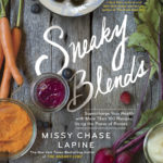 Sneaky Blends by Missy Chase Lapine